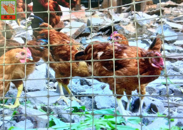 Gray Plastic Poultry Netting, Temporary Chicken Fence, 1.2M High, 35GSM, Chicken Netting